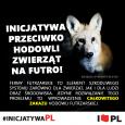 protest_antyfutrzarski